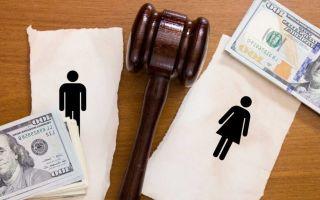 Раздел имущества при разводе: возможно ли совместить иск?
