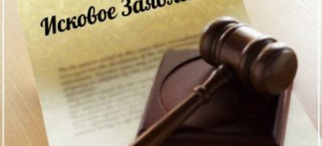 Как подать судебный иск об установлении отцовства и взыскании алиментов?